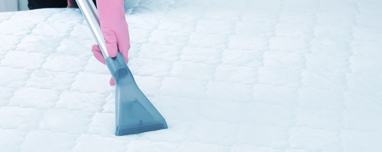 Best Mattress Cleaning Armadale